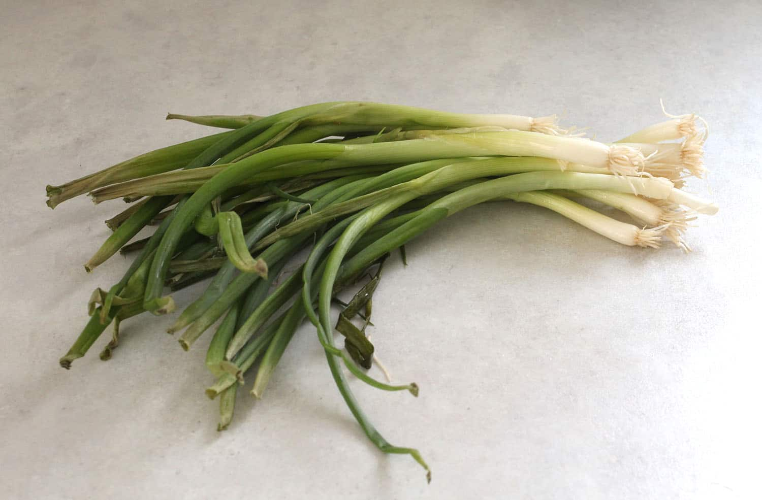 tired green onions