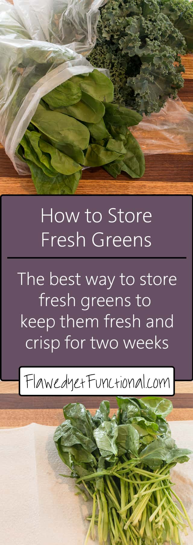 Maximize Fresh Produce | How to Store Leafy Greens