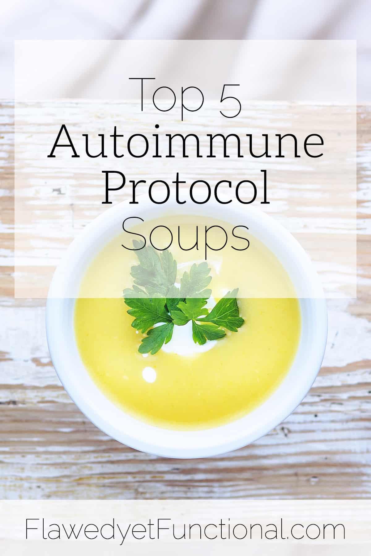 Top 5 Autoimmune Protocol Soups | Tried & True Recipes