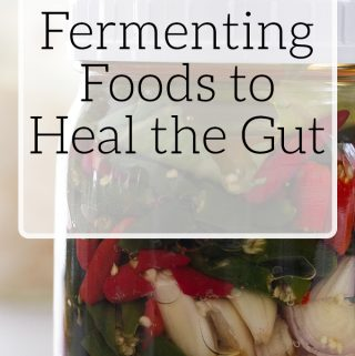 Fermenting Foods to Heal the Gut